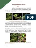 11_Briofitos_texto.pdf