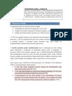 8.1. Processo Penal - Ponto 1 - ok.docx