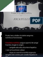 Vascularizatia ficatului