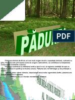 presentation_padurea.ppsx