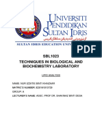 sbl-report4 lipid