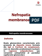 Curs 5.GN Membranoasa