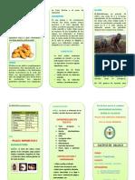 152456867-TRIPTICO-OLLUCO.docx