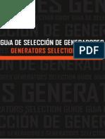 Cómo Elegir Generador Eléctrico