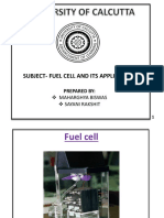 Fuel Cell and It's Application