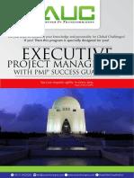 Executive Project Management With PMP Success Guarantee Karachi