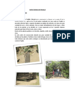 Visita Tecnica en Trujillo