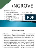 Matkul bahan alam laut Mangrove Ppt
