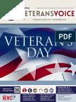 Veterans Voice Newsletter, November 2017