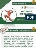 Anatomia y Topografia