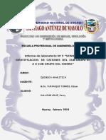 informe-5-Q-A.doc