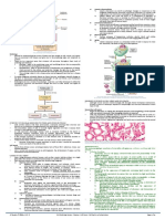 PLE Pathology Cell Injury, Cell Death, And Adaptations