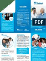 padomi2013.pdf