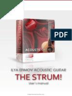 Ilya_Efimov_Acoustic_Guitar_Strum_Manual.pdf