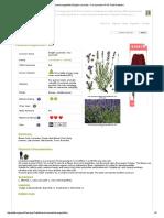 Lavandula angustifolia English Lavender, True Lavender PFAF Plant Database.pdf