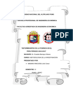 Determinantes de La Pobreza en El Peru Periodo 2010