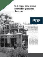 Mondragón_ Caña de Azúcar, Palma Aceitera, Biocombustibles y Relaciones de Dominación