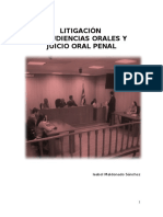 Audiencias Orales y Juicio Oral Penal (1)