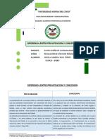 DIFERENCIA ENTRE PRIVATIZACIÓN Y CONCESIÓN.docx