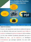 12.- Investigacion y Analisis de Persidas Reales, Potenciales y Desvios