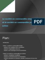 Exposé SCS.pdf
