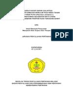 KIPA Syarapuddin 2014
