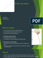 Physics of Nervous System
