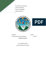 Universidad de San Carlos de Guatemal1