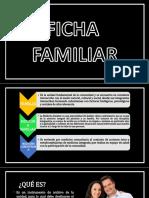Concepto y desarrollo de  Ficha Familiar