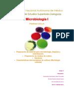 Práctica 3,4,5 y 6 Microbiología.