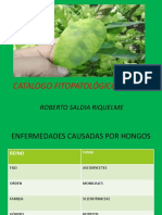 Catalogo Fitopatológico Virtual