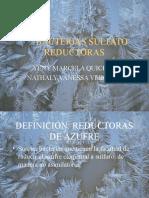 bacterias_sulfato_reductoras