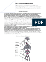 Sistema Endócrino e Hormônios