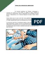 INCIDENCIA GESTACIONAL EN LA REGION DE LAMBAYEQUE.docx