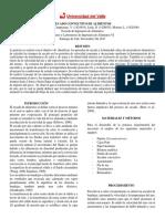 Informe Secado Convectivo Tyl6