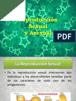 Reproducción Sexual y Asexual SARA