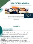 FISCALIZACION_LABORAL_UIGV.ppt
