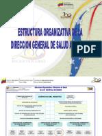Estructura Organizativa DGSA
