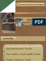 Presentación Kariña.pdf