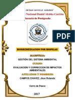 Trabajo de biorremediacion de Biopilas.pdf