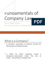 1. Fundamentals of Company Law