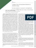 chen feeding influences the adipose tissue responses to exercise in overweightobese men  1