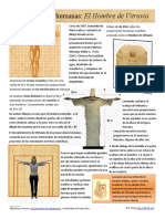 Infografia Proporciones Humanas El Hombre de Vitruvio