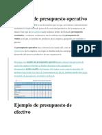 Ejemplo de Presupuesto Operativo