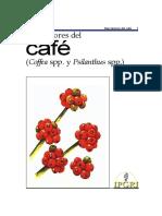 Descriptores_del_café__Coffea_spp._y_Psilanthus_spp.__487.docx