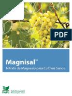 Magnisal Spanish