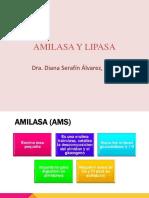 Amilasa y Lipasa