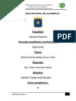 MAQUINARIA-I.docx