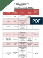 Chinese-Companies.pdf