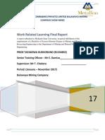 Final Report Ptk BMC 2017
